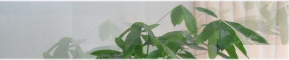 整体/カイロプラクティック/観葉植物