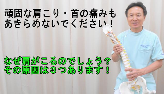 肩、首、背中、肩甲骨の痛みの原因